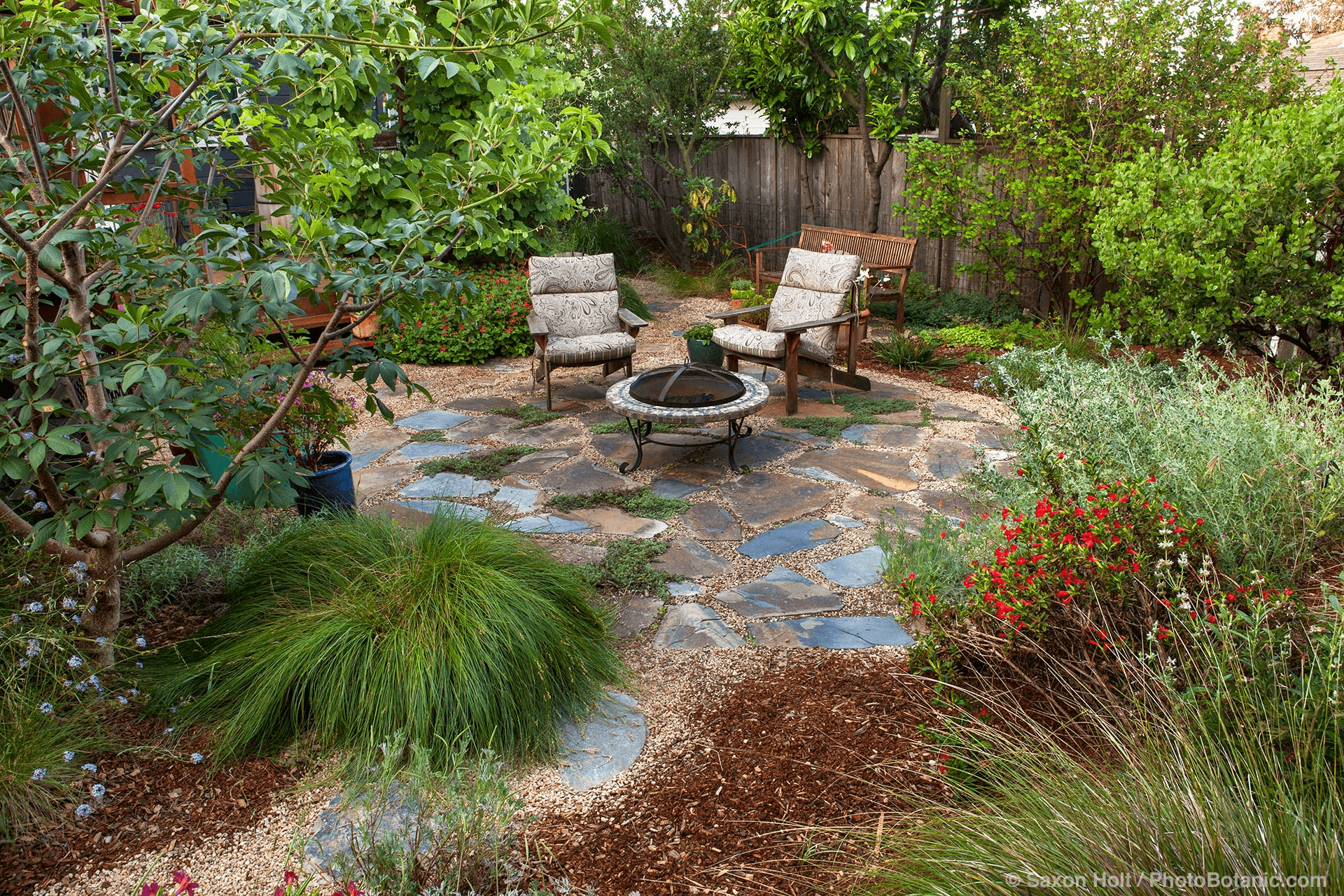 desiging on trend gardens outdoor rooms landscape design low maintenance garden design - Garden Design Low Maintenance