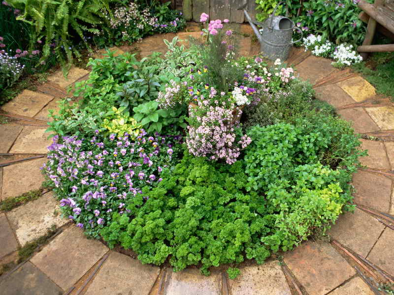 circlegallery-of-herb-garden-design-ideaseas
